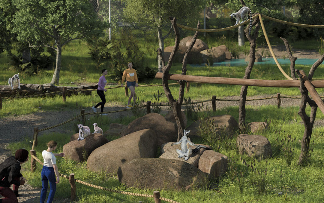 Begehbarer Lemurenwald