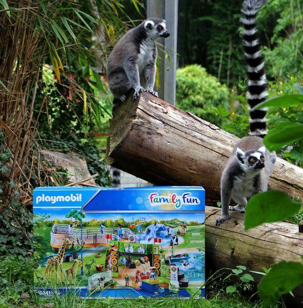 Großes playmobil Zoo-Quiz